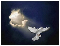 Dove Black Clouds Light Darkness Holy Spirit Rays Peace